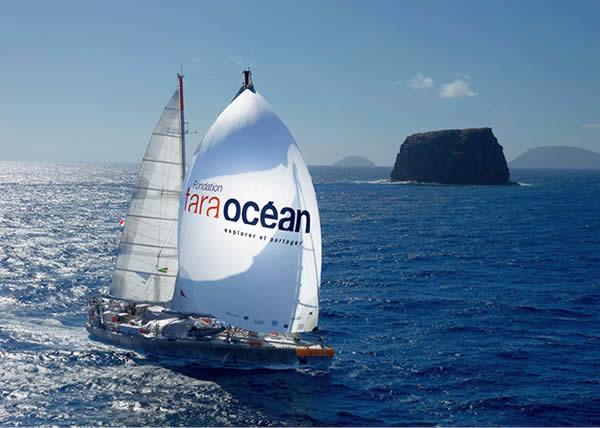 North Sails si allea con la Tara Ocean Foundation per una spedizione scientifica rivoluzionaria